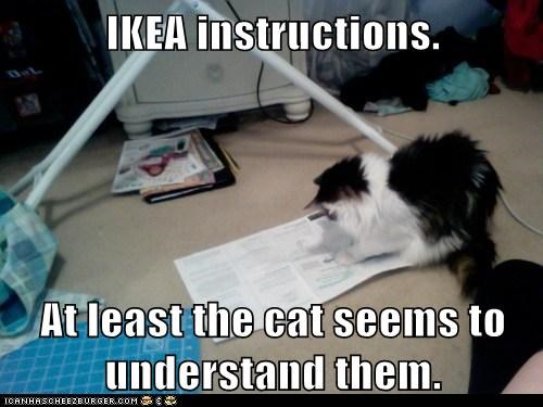 EHS software Ikea effect