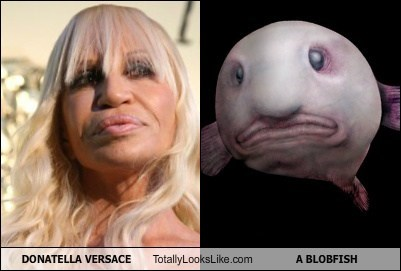 Donatella Versace Totally Looks Like A Blobfish