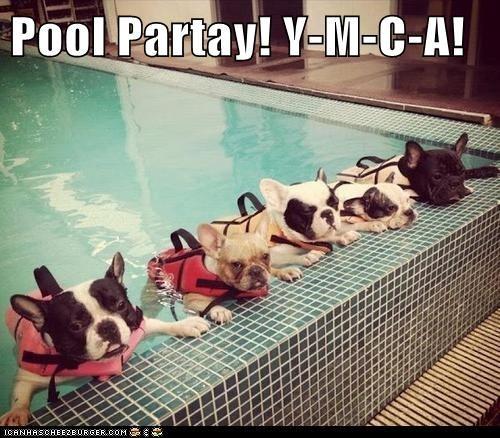Pool Partay! Y-M-C-A!