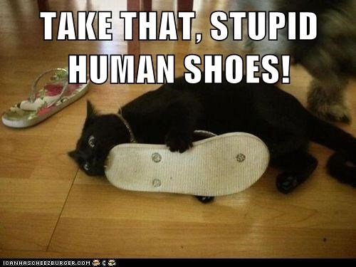 TAKE THAT, STUPID HUMAN SHOES!
