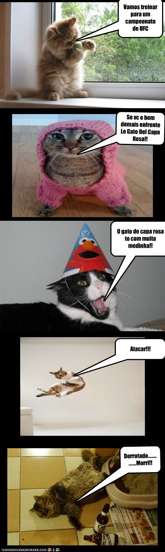 Le gato lutador