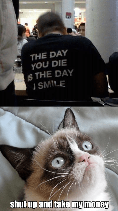 shut up and take my money,shirts,Grumpy Cat,Cats,poorly dressed,funny