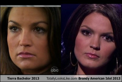 Tierra From 'The Bachelor' 2013 Totally Looks Like Brandy From 'American Idol' 2013
