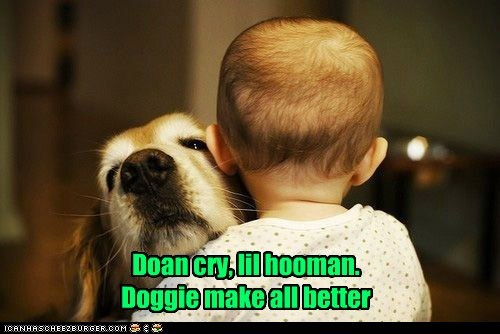 Doan cry, lil hooman. Doggie make all better