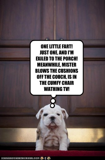 ONE LITTLE FART! JUST ONE, AND I'M EXILED TO THE PORCH! MEANWHILE, MISTER BLOWS THE CUSHIONS OFF THE COUCH, IS IN THE CUMFY CHAIR WATHING TV!