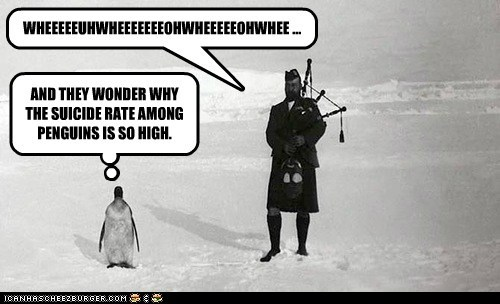 scotsmen,penguins,bagpipes