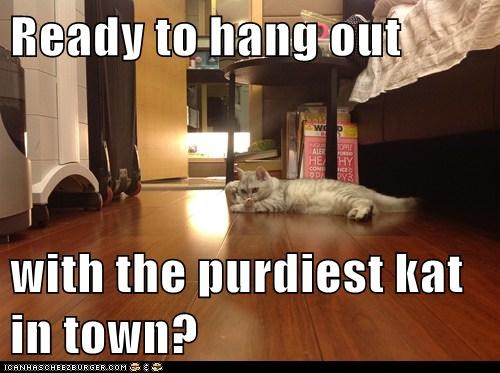 Ready to hang out  with the purdiest kat in town?