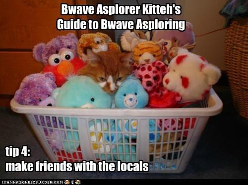 Bwave Asplorer Kitteh's  Guide to Bwave Asploring