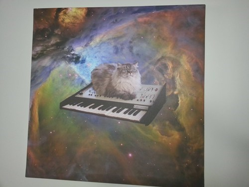 Keyboard Cat in Space!