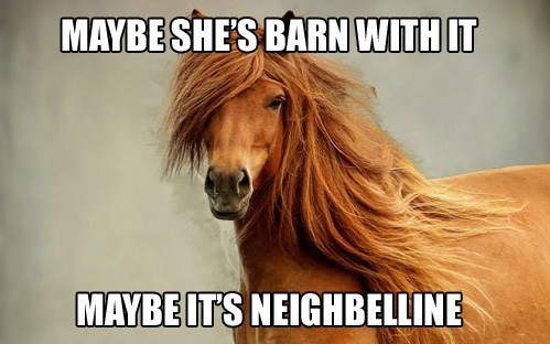 makeup,neigh,puns,commercials,horses,barn