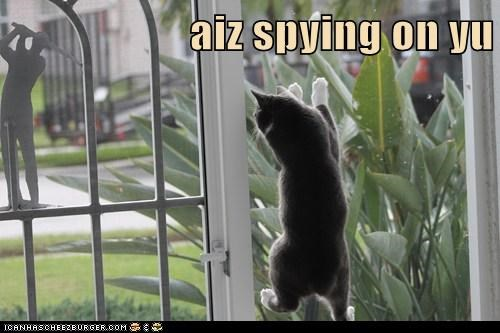 aiz spying on yu