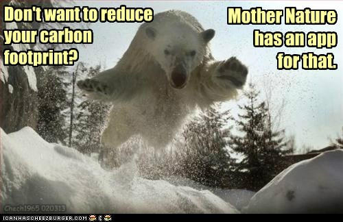 carbon footprint,attacking,bears,apps,polar bears
