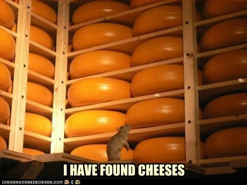 cheese,cheeses,puns,mice,National Cheese Day,melty