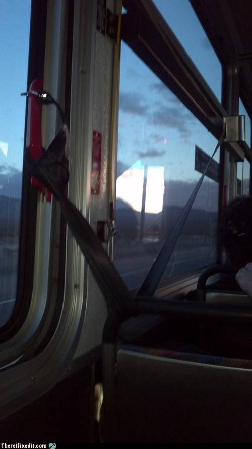 seatbelt,public transit,bus