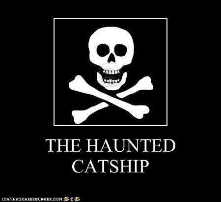 THE HAUNTED CATSHIP