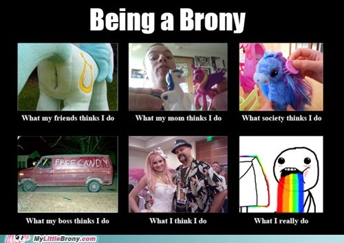 What It's Like Being a Brony