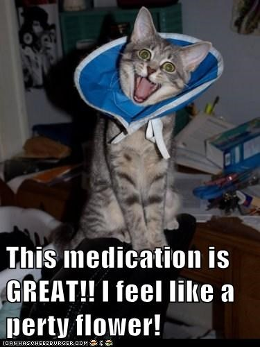 This medication is GREAT!! I feel like a perty flower!