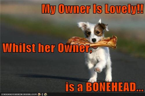 My Owner Is Lovely!! Whilst her Owner,  is a BONEHEAD...