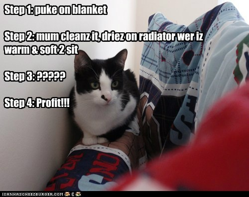 Step 1: puke on blanket   Step 2: mum cleanz it, driez on radiator wer iz warm & soft 2 sit   Step 3: ?????  Step 4: Profit!!!
