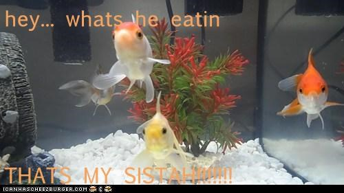 hey... whats he eatin  THATS MY SISTAH!!!!!!!
