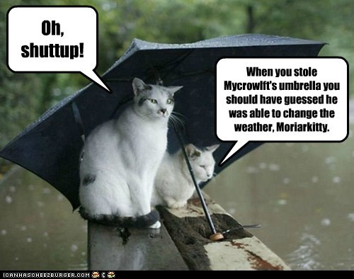 When you stole Mycrowlft's umbrella you should have guessed he was able to change the weather, Moriarkitty.