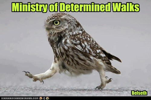 Ministry of Determined Walks