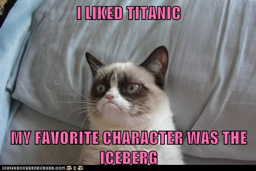 I LIKED TITANIC  MY FAVORITE CHARACTER WAS THE ICEBERG