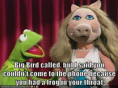 throat,kermit the frog,muppets,embarrassed,puns,big bird,miss piggy