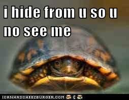 i hide from u so u no see me