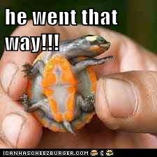 he went that way!!!