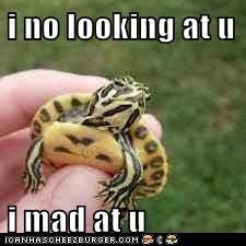 i no looking at u  i mad at u