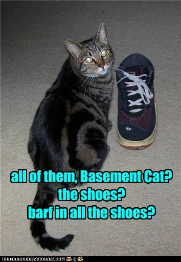 all of them, Basement Cat? the shoes? barf in all the shoes?