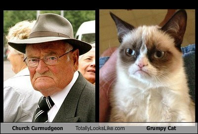 Church Curmudgeon Totally Looks Like Grumpy Cat