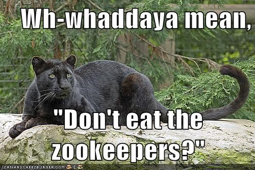 "Wh-whaddaya mean,  ""Don't eat the zookeepers?"""