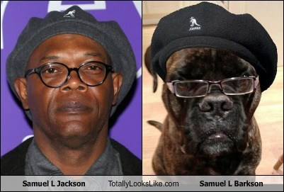 Samuel L Jackson Totally Looks Like Samuel L Barkson