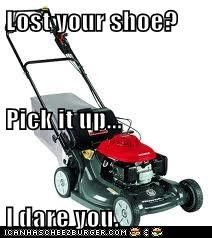 Lost your shoe? Pick it up... I dare you.