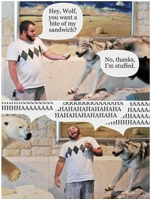 question,answer,conversation,human,literalism,stuffed,sandwich,food,classic,offer,wolf