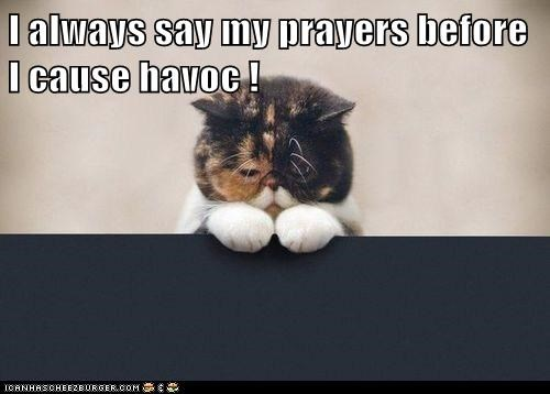I always say my prayers before I cause havoc !