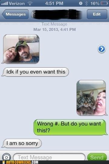 cat,do not want,iPhones,AutocoWrecks