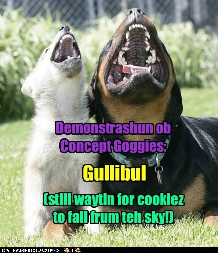 Demonstrashun ob Concept Goggies: