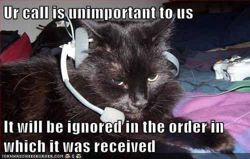 Call Center Cat