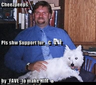 Cheezpeeps: Pls shw Support fur _C_A_T_  by *FAVE* to make HIM ☻