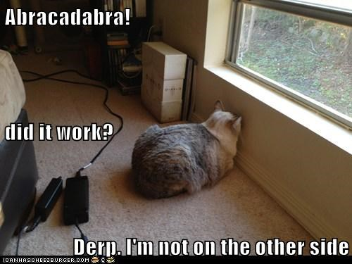 Abracadabra! did it work? Derp. I'm not on the other side