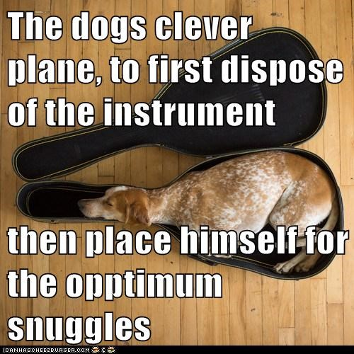 The dogs clever plane, to first dispose of the instrument  then place himself for the opptimum snuggles