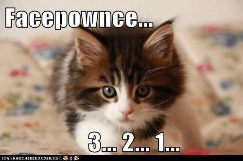 Facepownce...                   3... 2... 1...