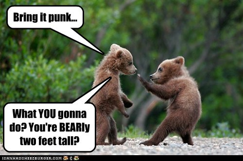 Adventure Bears I: Fight Cub