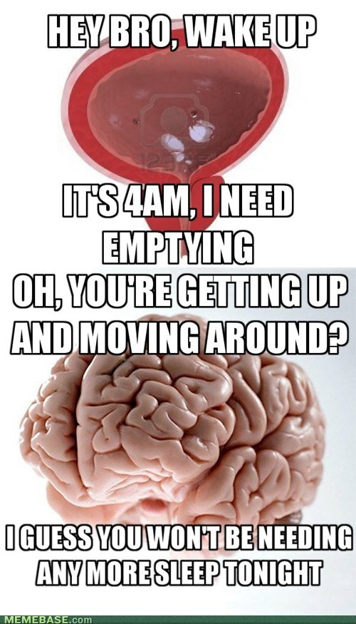 Scumbag Bladder, Scumbag Brain