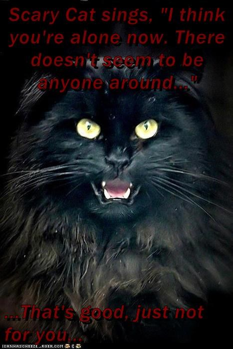"Scary Cat sings, ""I think you're alone now. There doesn't seem to be anyone around...""  ...That's good, just not for you..."