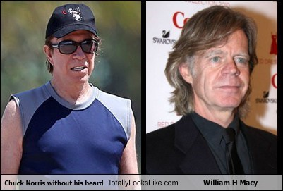 Chuck Norris without his beard Totally Looks Like William H Macy
