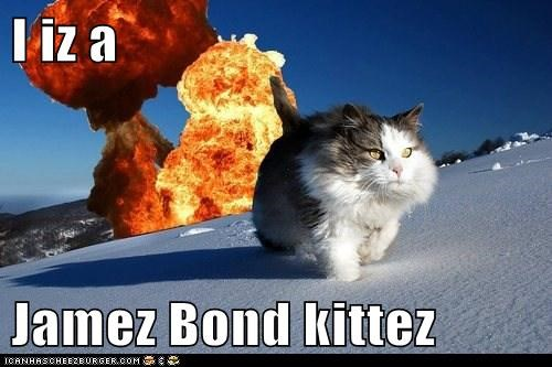 I iz a  Jamez Bond kittez
